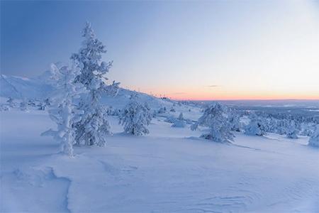 neige et froid glacial